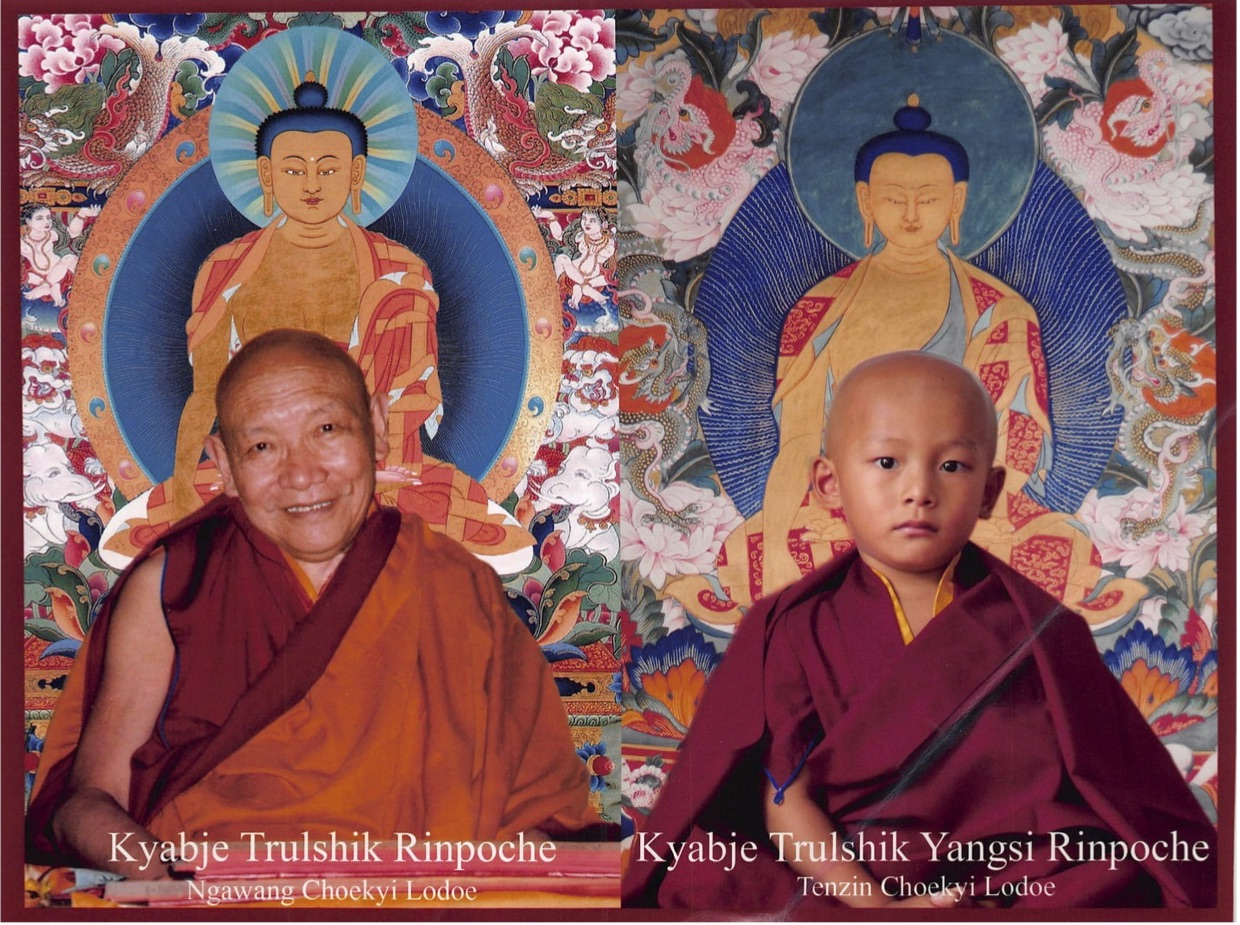 "We'll try to arrange an audience with Kyabje Trushik Yansu Rinpoche, the reincarnation of Kyabje Trulshik Rinpoche (""The Destroyer of Illusion"") and one of the main teachers of the Dalai Lama"