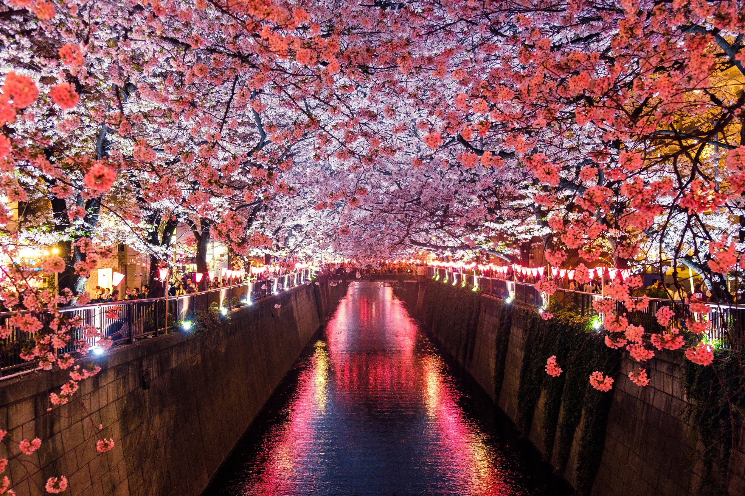Through Artists Eyes Japanese Nature And Culture Tour Join Tour Waitlist Tiny World Tours