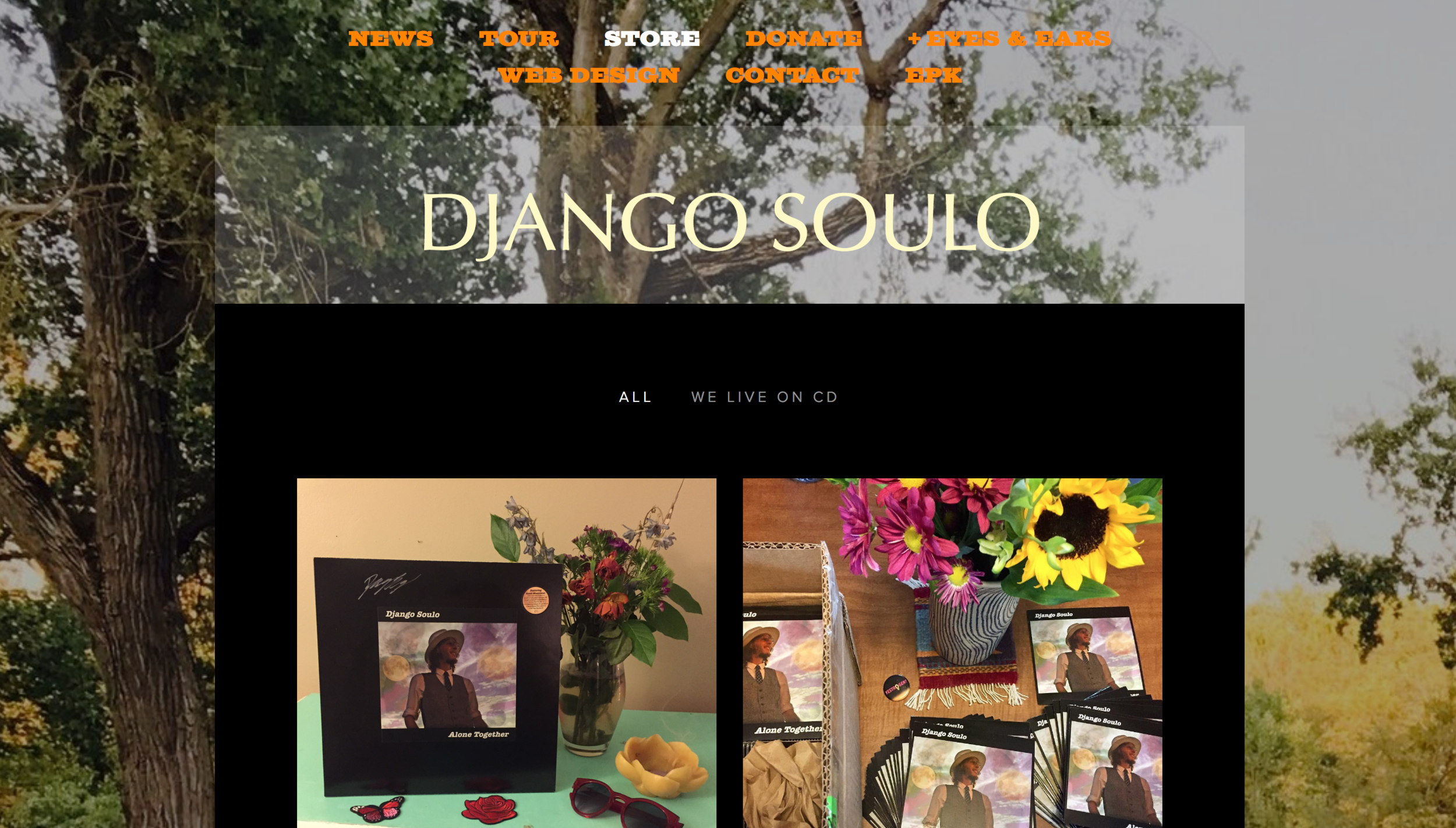It is every Leo's dream to build their own website.  Django Soulo