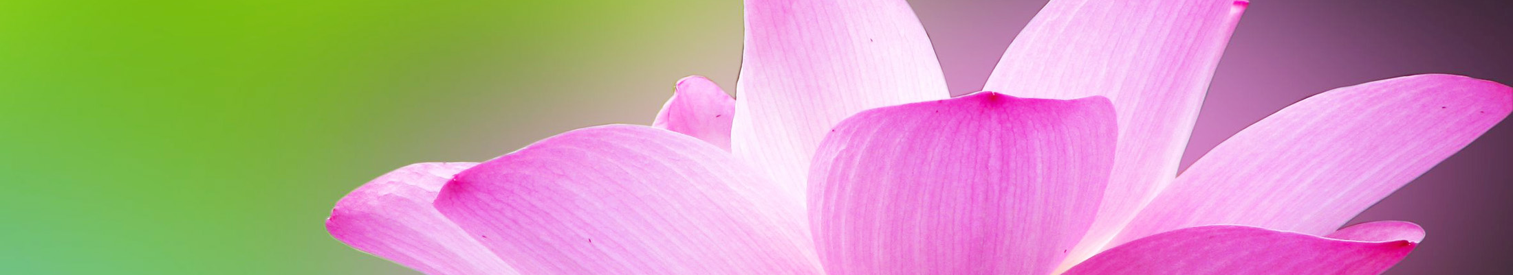 how-fertility-acupuncture-helps-women-men-empress-acupuncture-richmond-va.png