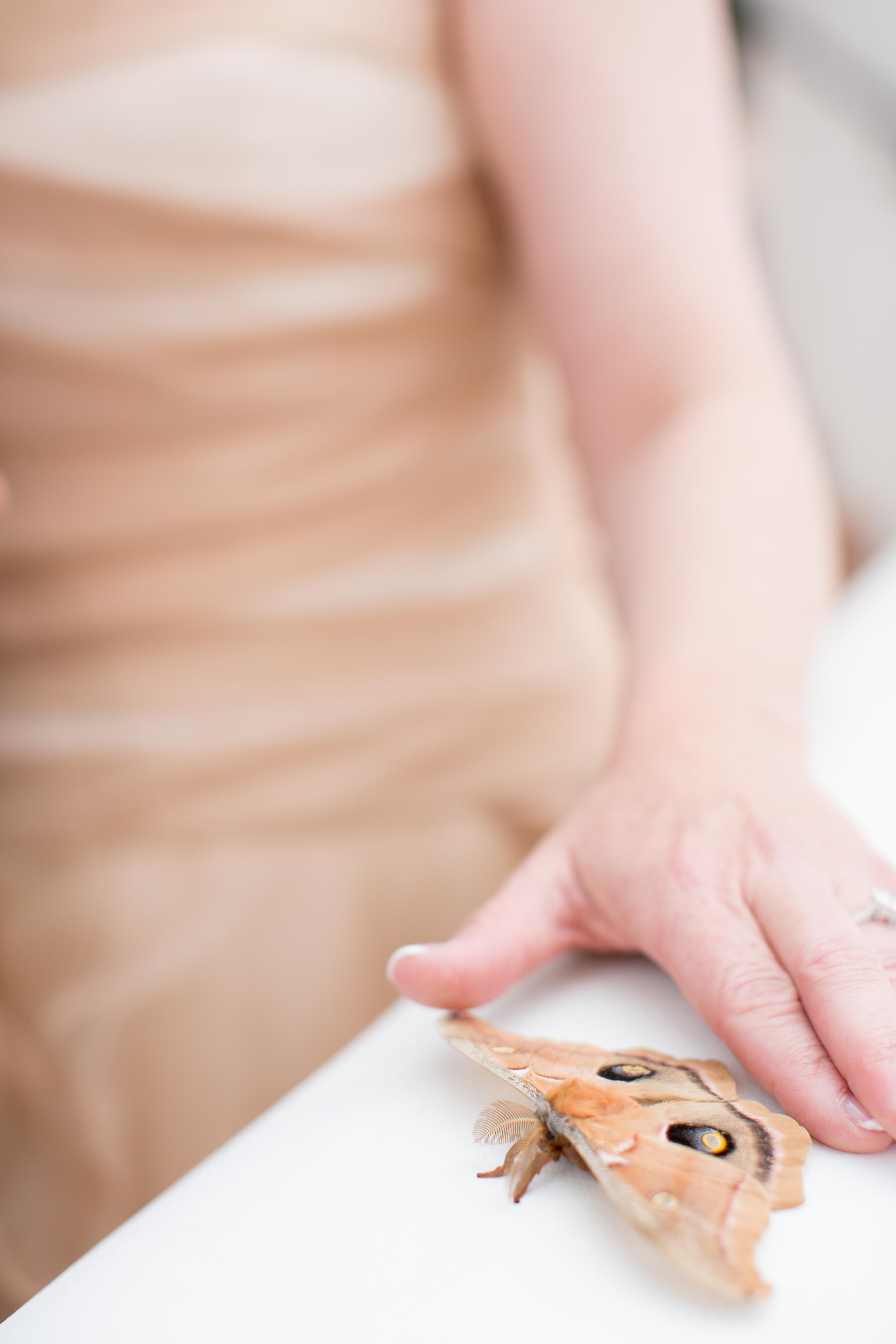 Ojai Valley Inn Wedding - Hoste Events