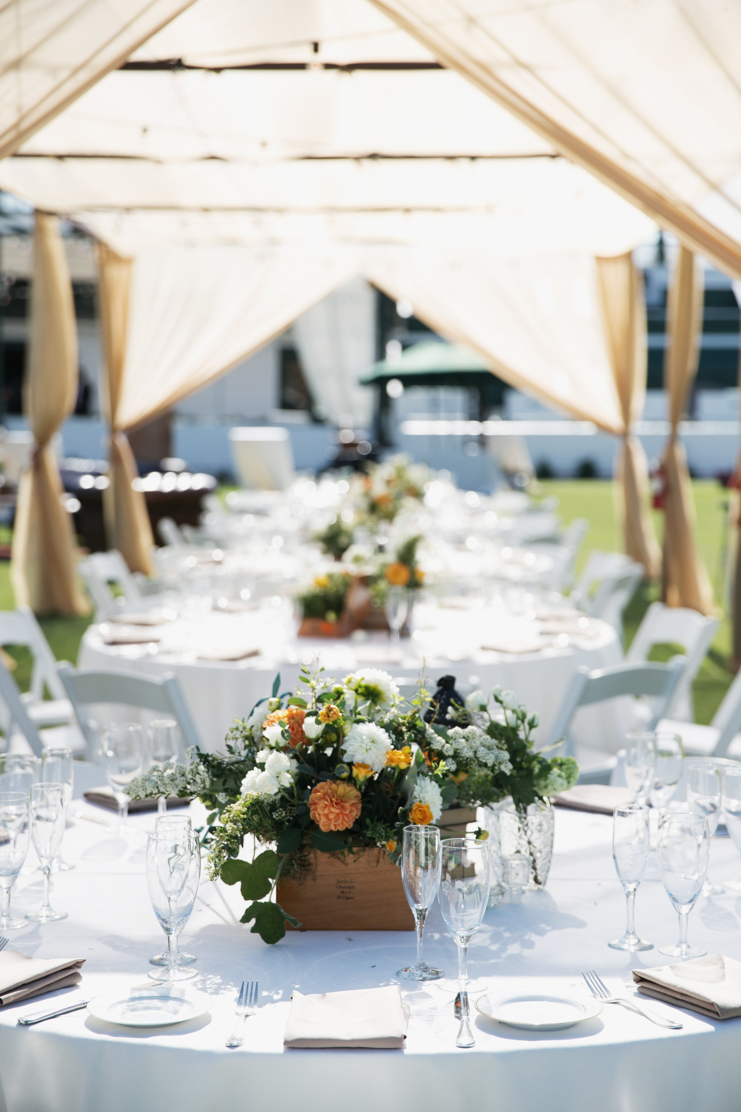 Santa Barbara Polo Club tented reception details