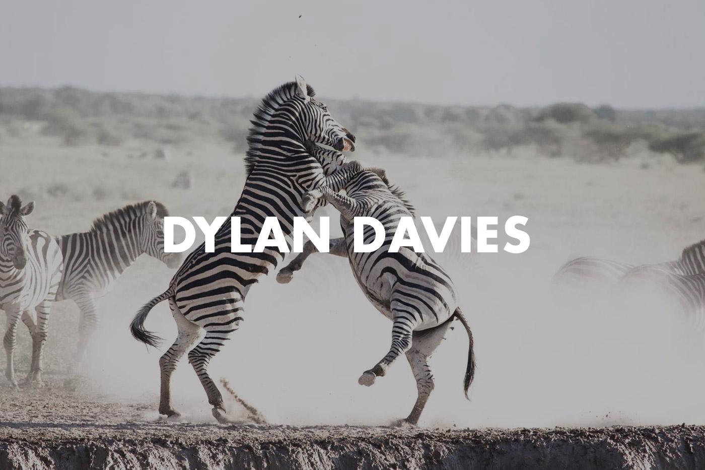 Dylan-Davies-Hero.jpg