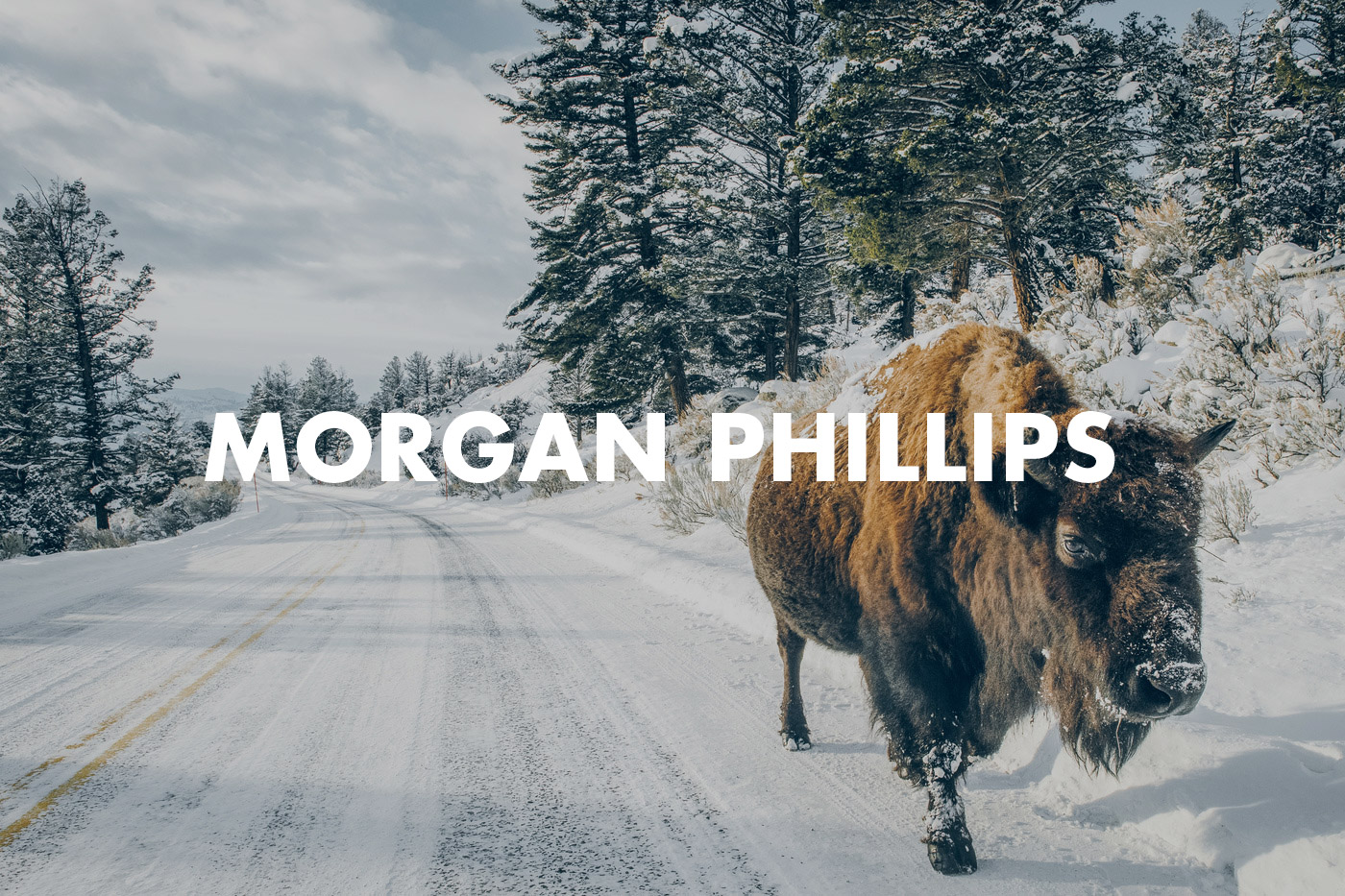 Morgan-Phillips-Hero.jpg