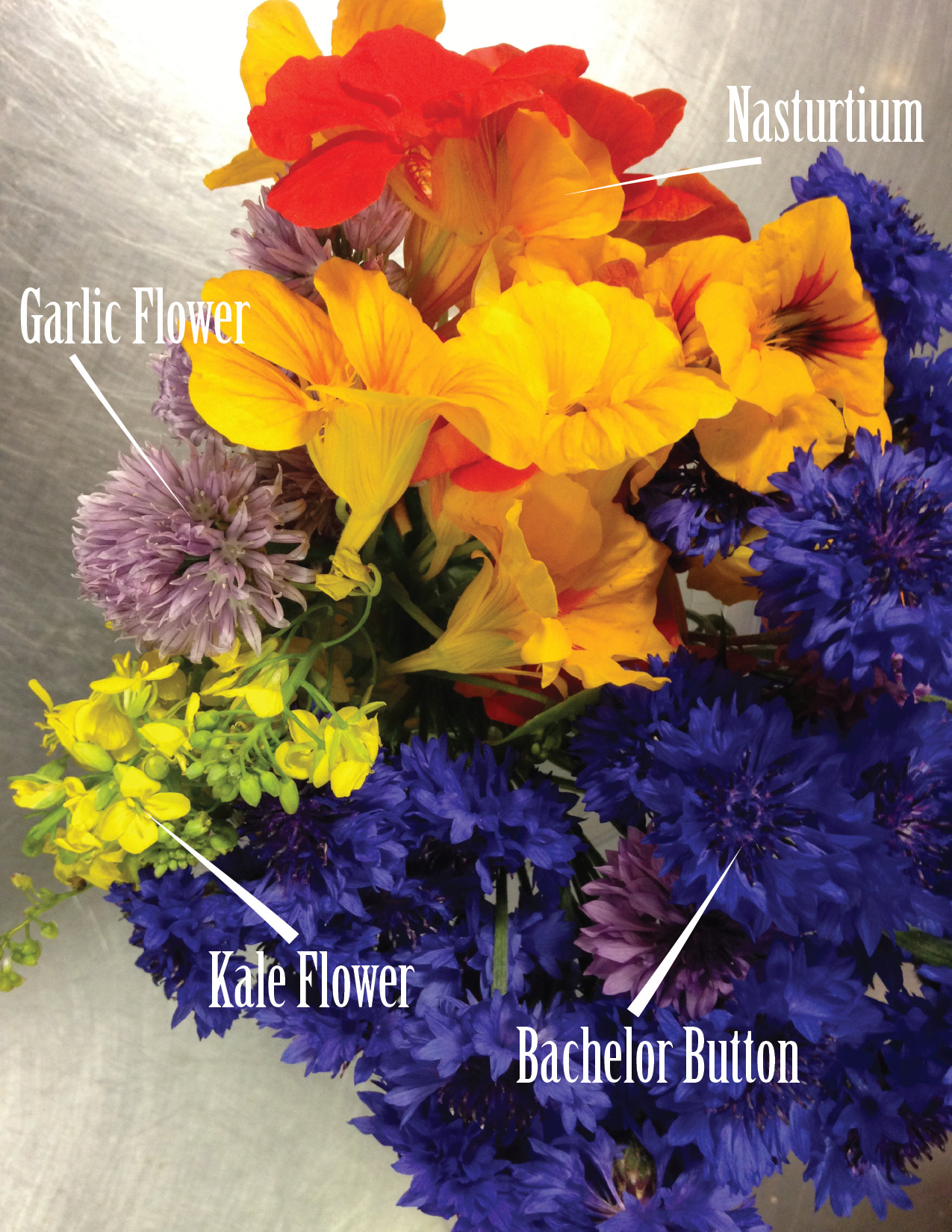Know Your Edible Flowers!      Edible flowers can add a pop of color and a whimsical touch to any plate, both sweet and savory. Some of these flowers have great flavor of their own. Garlic and Chive Flowers offer a more concentrated flavor of the more commonly eaten parts of the plant. And Nasturtiums boast a delightful peppery taste in both the blooms and the leaves. Other flowers, such as kale flowers and bachelor buttons, simply taste botanical and fresh. Whether topping a salad or decorating a dessert, we love edible flowers at The National!