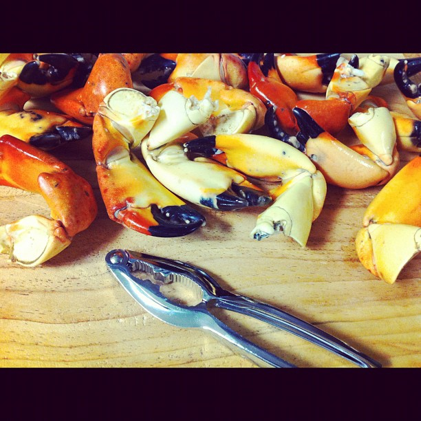 Florida stone crab claws, delicious and a Seafood Watch Best Choice