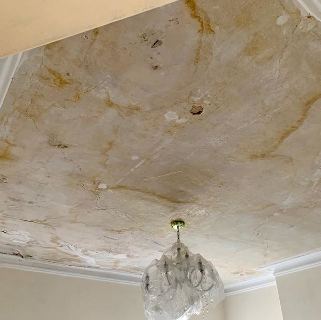 Fair to say we had our work cut out for us this week when we had to tackle this old ceiling. Upgrading our kit we are now using dustless sanders, allowing us to be even more efficient whilst working and leaving the property dust free! . . . . . . #nhrenovations #dulux #duluxselectdecorator #painter #decorator #london #londonsbest #renovate #festool #sanders #paint #ateam