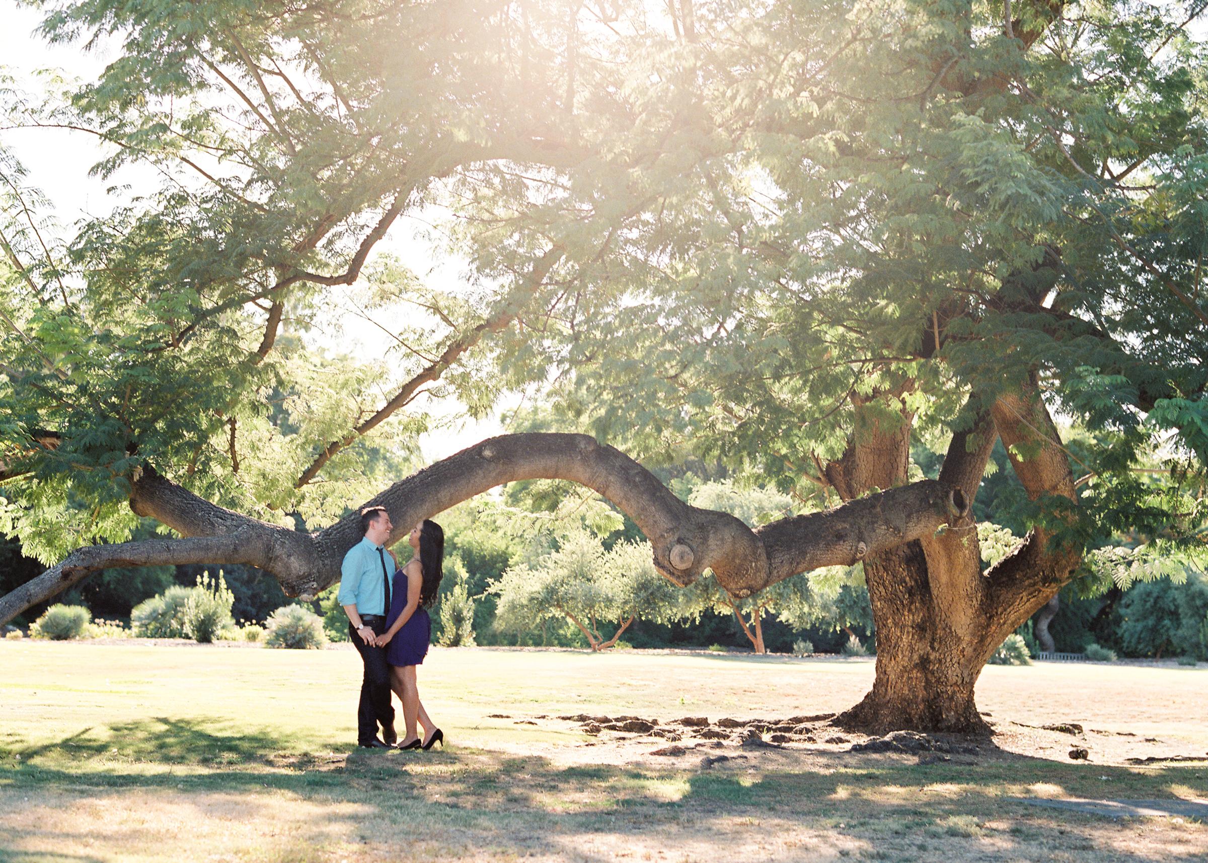 LA-Arboretum-Engagement-1.jpg