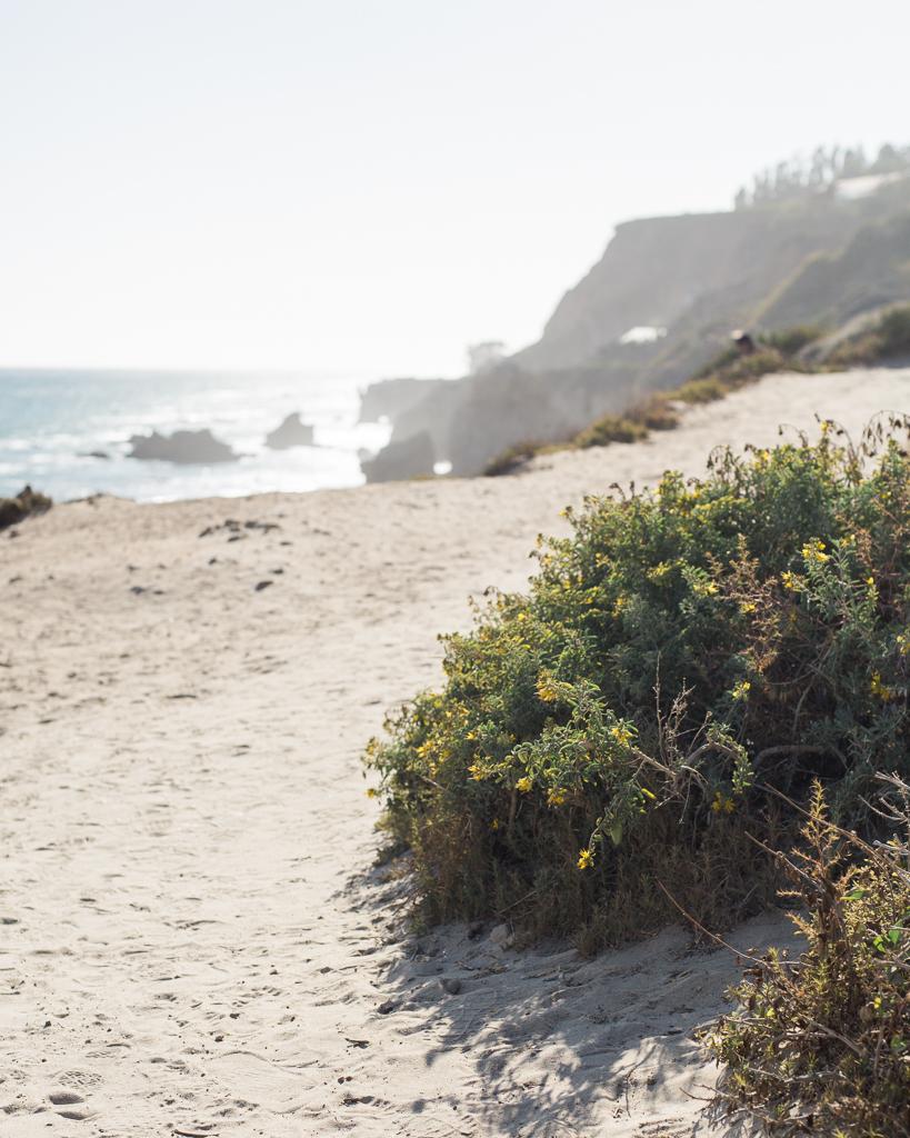 El-Metador-Beach-Engagement-Session-in-Malibu17.jpg