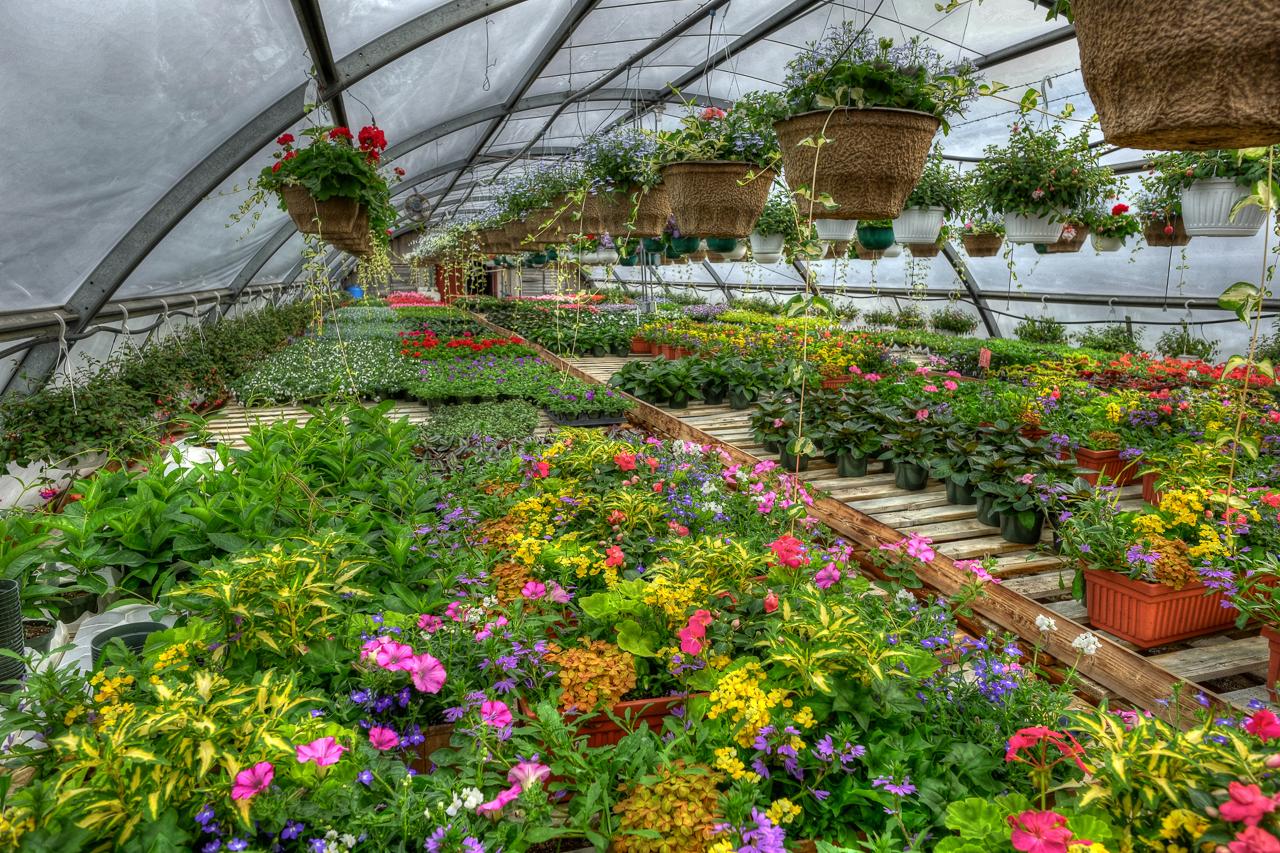 Jonker S Garden