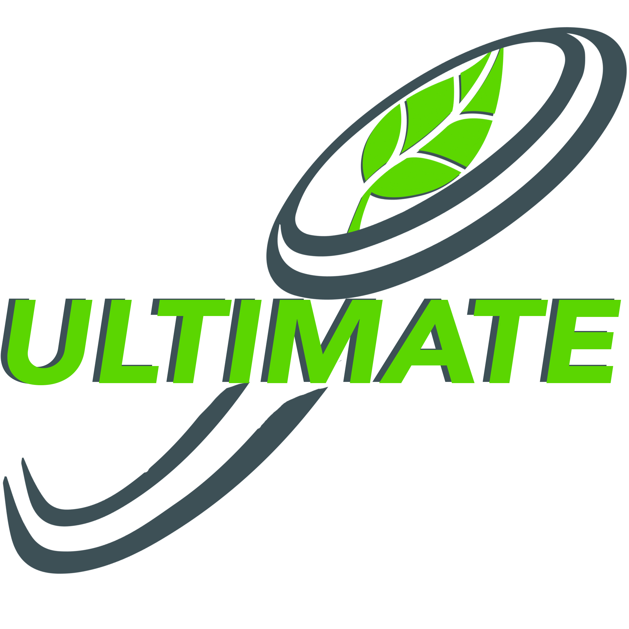 UltimateDiscWeb.jpg