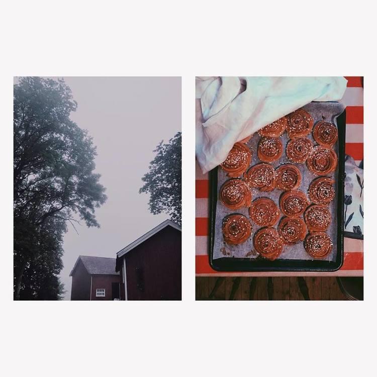 Baking cinnamon buns.