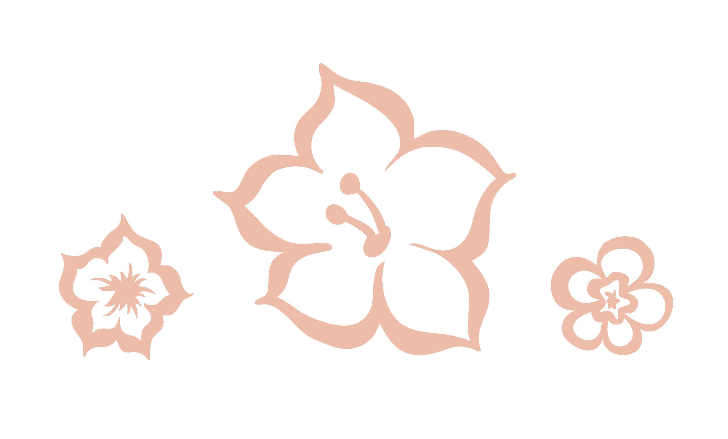 DSP_FloralIllustrations.jpg