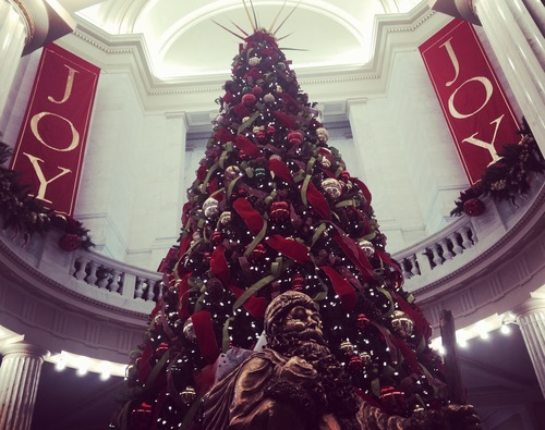 Emily - Christmas tree.jpg
