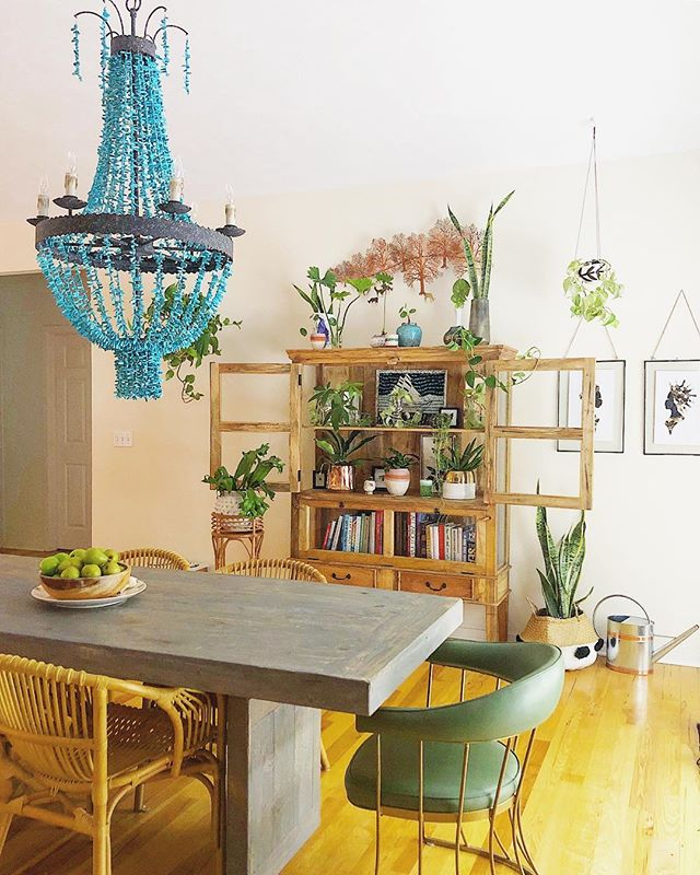 "I spent the morning giving birth to 17 Low Light Plant babies, and then creating a nursery for them inside of my new cabinet from @nadeauchicago 🌱🌿🍃 (I'm. Exhausted.) BUT I'm feeling pretty inspired by the combination of the cabinet, the dining table from @firefurniture and my turquoise chandelier 🦋🔥🦋. What's next? A Rug? Do I go Colorful Moroccan because ART is LIFE, and if my house was engulfed in flames and my husband and pets were secure, I would most likely be found being restrained by several fire fighters, and screaming ""Is that my rug in there?! Is that my RUG?!"" like Sean Penn in Mystic River? OR should I stick to jute, because it's a beach house and I am gonna eat over it, the Chandelier will SING and I can maybe do some crazy wallpaper? 🤔 Happy Friday everyone!"