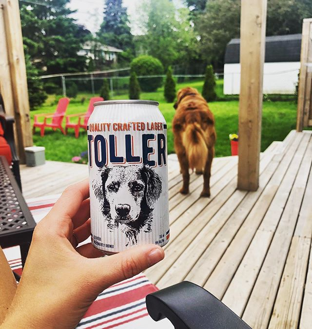 We LOVE when we see our beer being enjoyed all across the Maritimes ☺️🍻! Ryah in New Brunswick is sippin' on Toller while her gorgeous pooch keeps an eye on the property 😝👌🏻 • • Speaking of Toller- it is 🚨THURSTY THURSDAY🚨 yet again and of course we have Toller on tap, along with our classics AND some summer exclusive beers as well 🙌🏻🍺. Thursty Thursday of course means that today you get $2.00 off of the 2L growlers and $1.00 off of the 1L growler fills ☀️🍺 • • #thurstythursday #tollernation #nscraftbeer #localbrews #spindriftbrewing #craftcountry #summerwithspindrift #summertimefuntime #dogsofinstagramworld #beerstagram #lager #sippinonsummer
