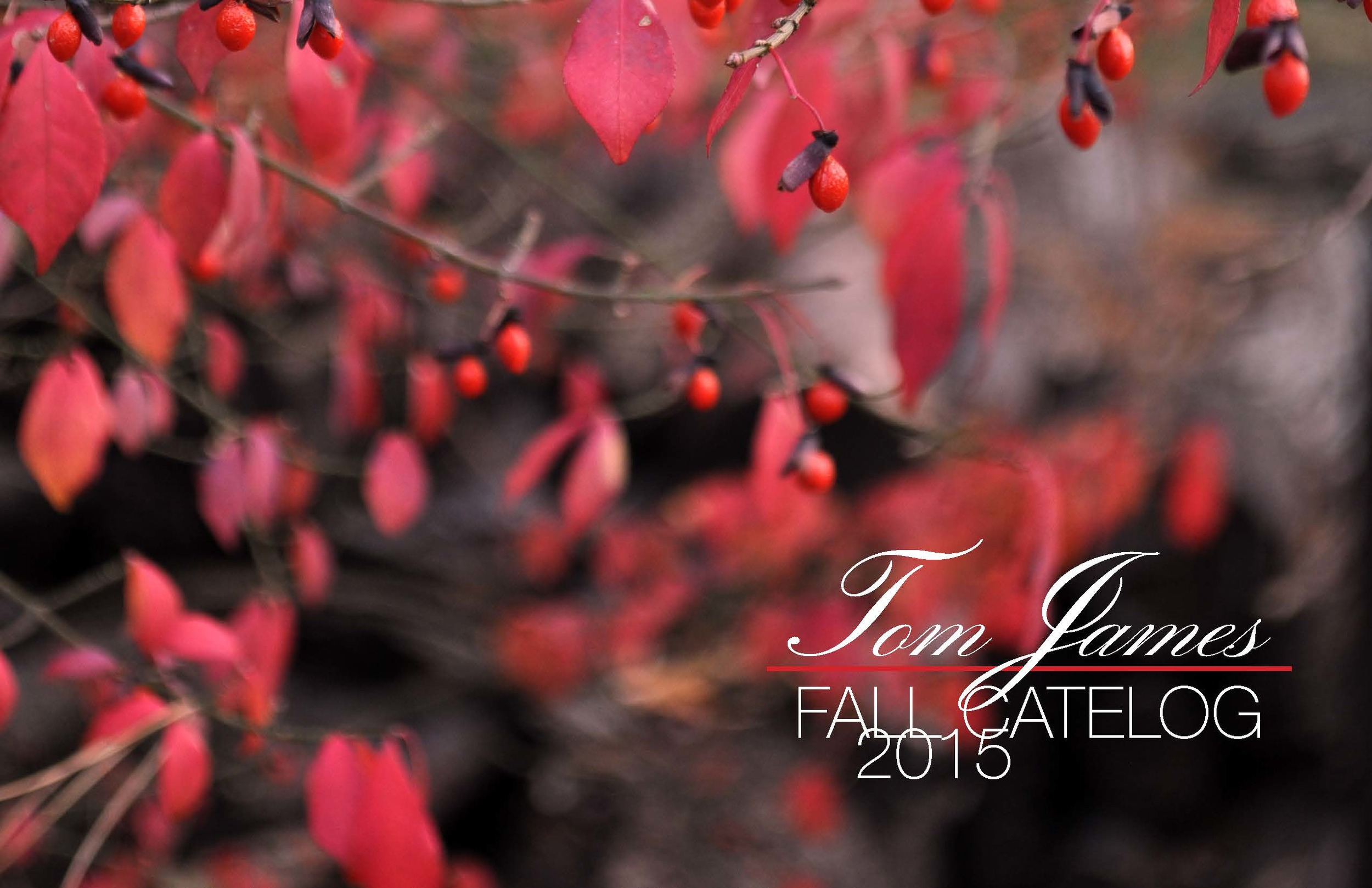 Tom James Fall Catalog 2015 pages_Page_13.jpg