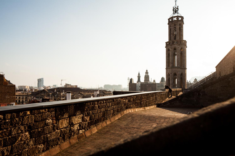 Roof top of the Basilica Santa Maria del Mar