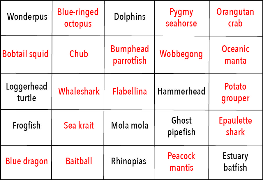 Here's the Bingo card.