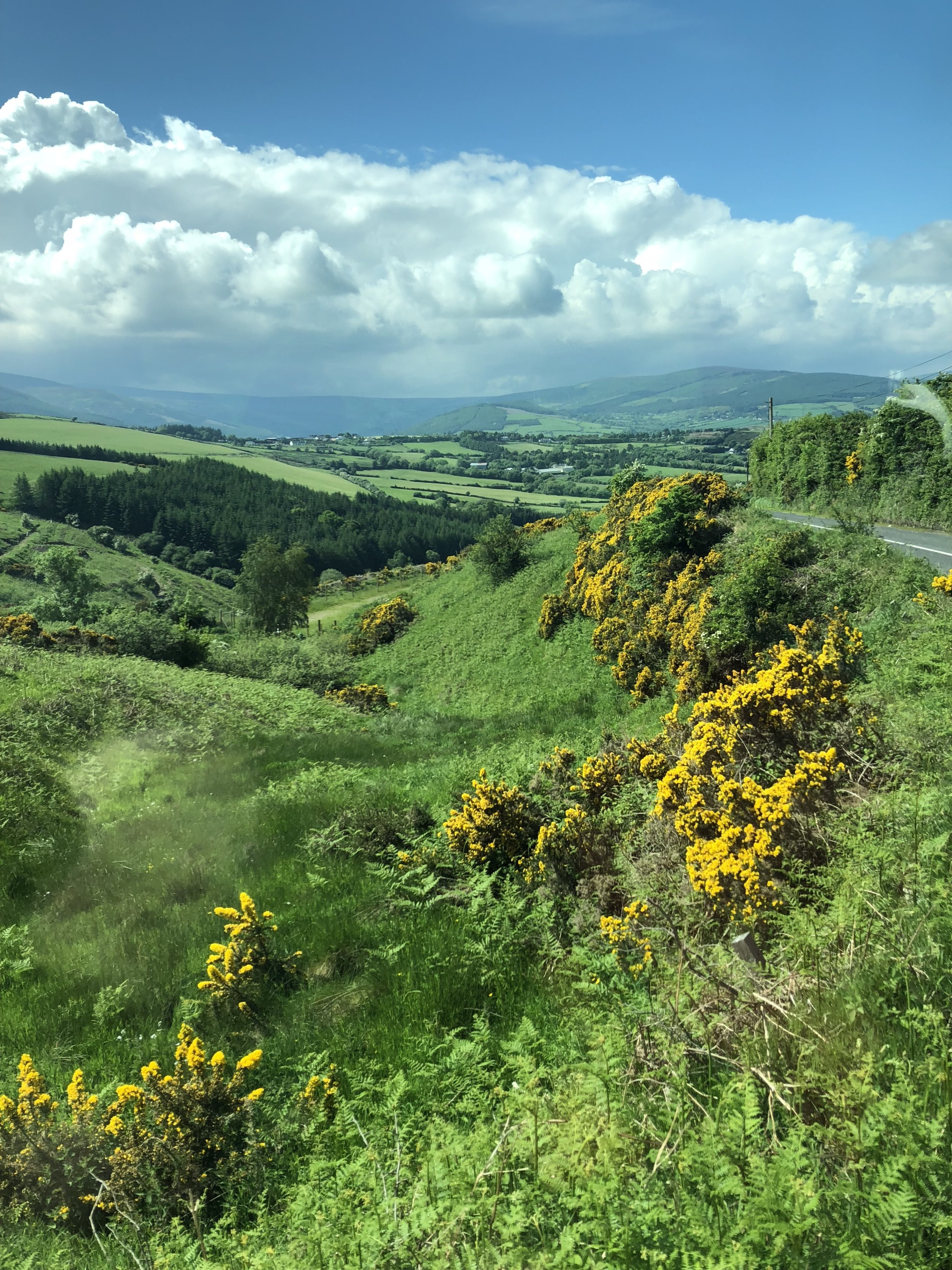 Let me state the obvious: Ireland is very green.