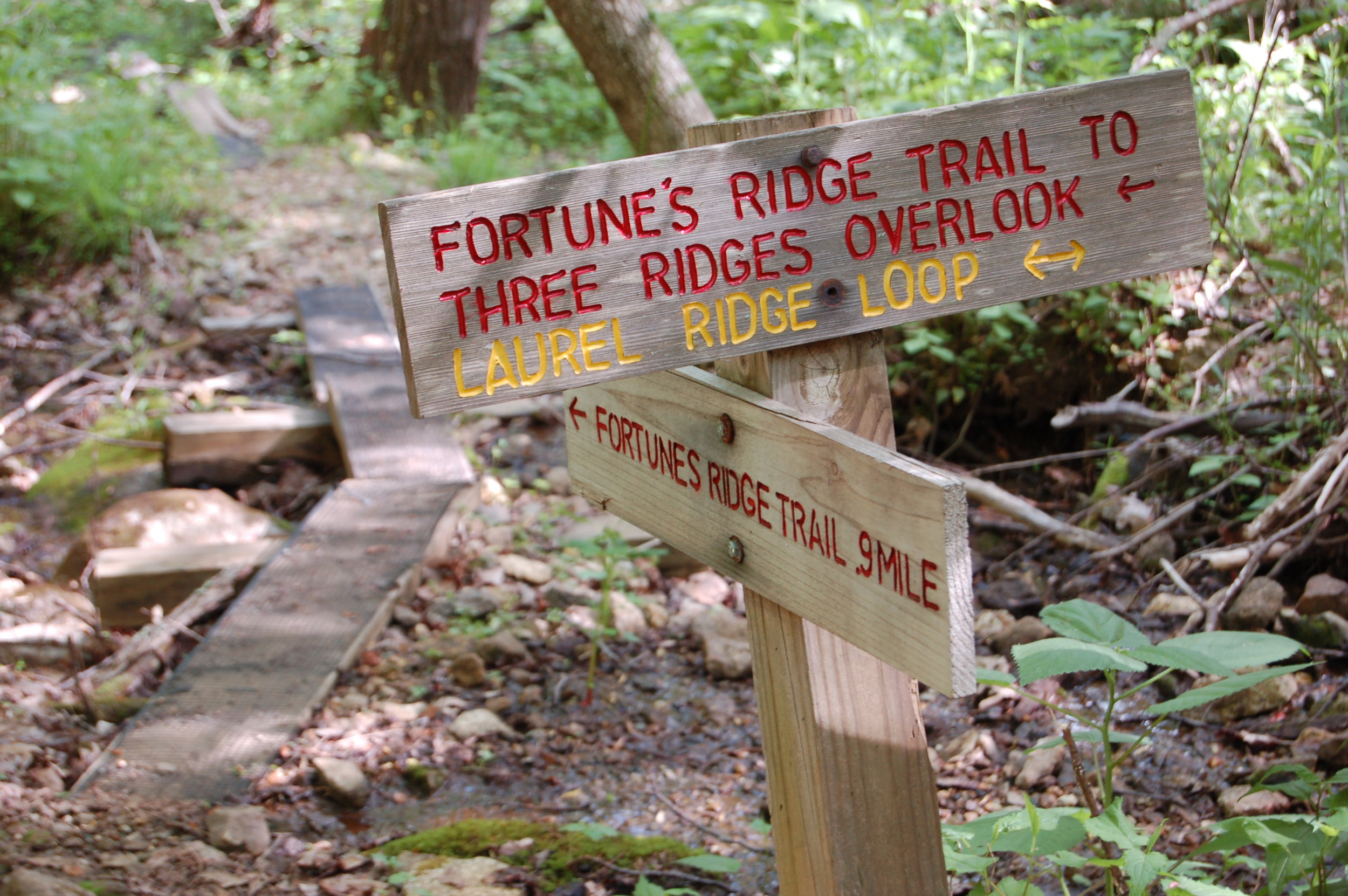 sign fortunes ridge may 14.JPG