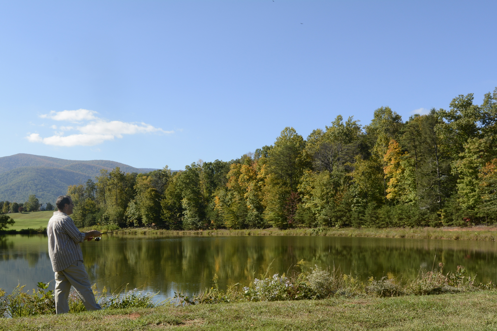 There is a stocked, private  trout steam and a dozen lakes and ponds (including a  trout pond ) reserved for Wintergreen property owners and their guests.  Wintergreen Sporting Club  members visit and report on area fishing opportunities, such as nearby Sherando Lake and trout streams.  Details here .