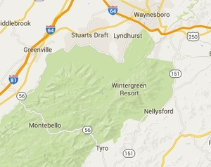 "The  green area on Google maps  that includes and surrounds Wintergreen is what is in the ""national forest."""