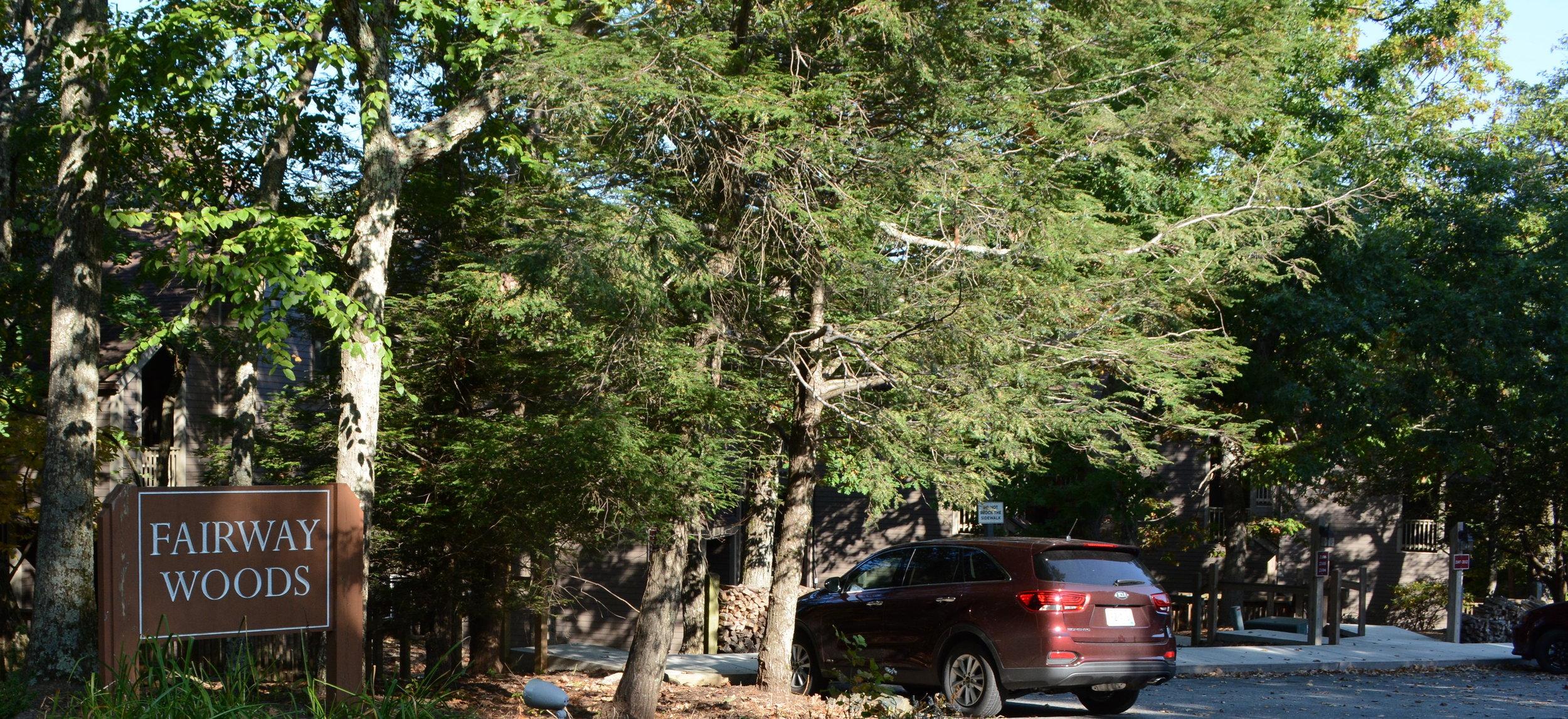 fairway woods wintergreen.JPG