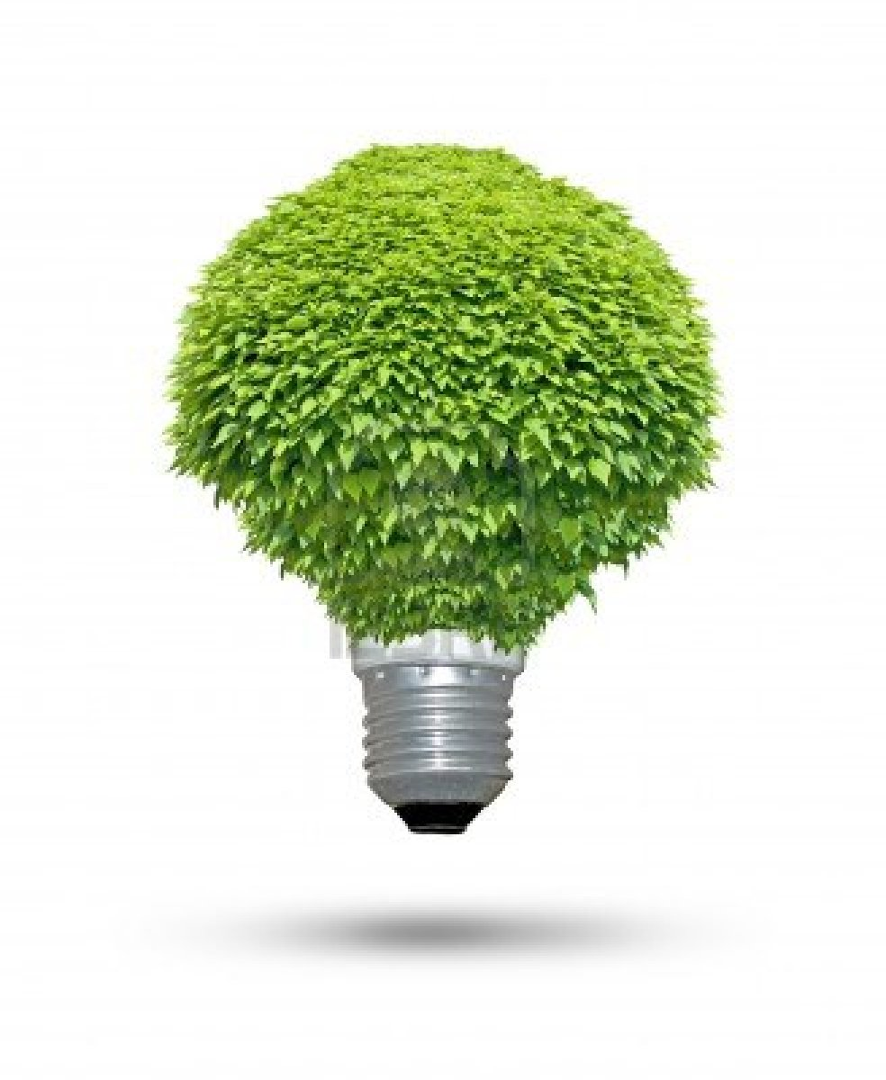 green-lightbulb1.jpg