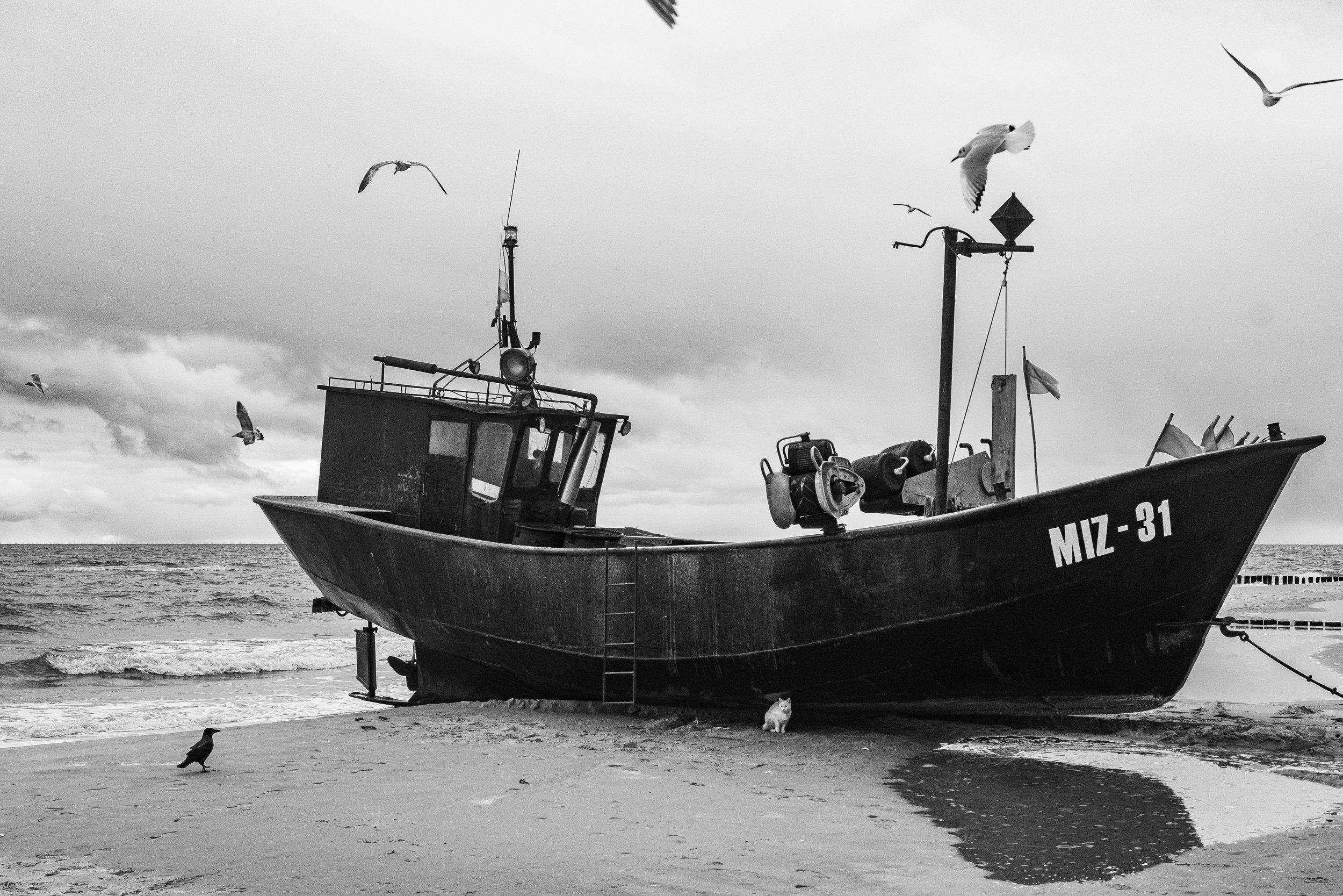 Baltic Sea.jpg