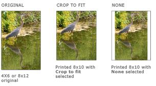 Order_Images.jpg