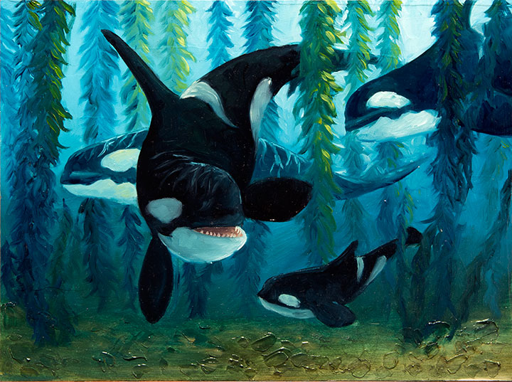 Copy of Orcas