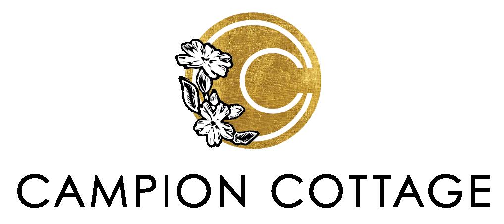new_logo_transparent.png