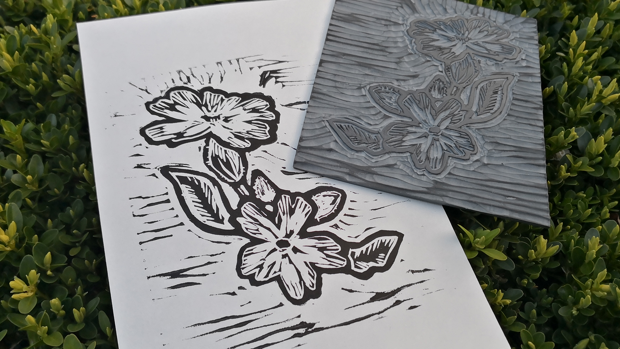 The lino-cut produced for the new Campion Cottage logo