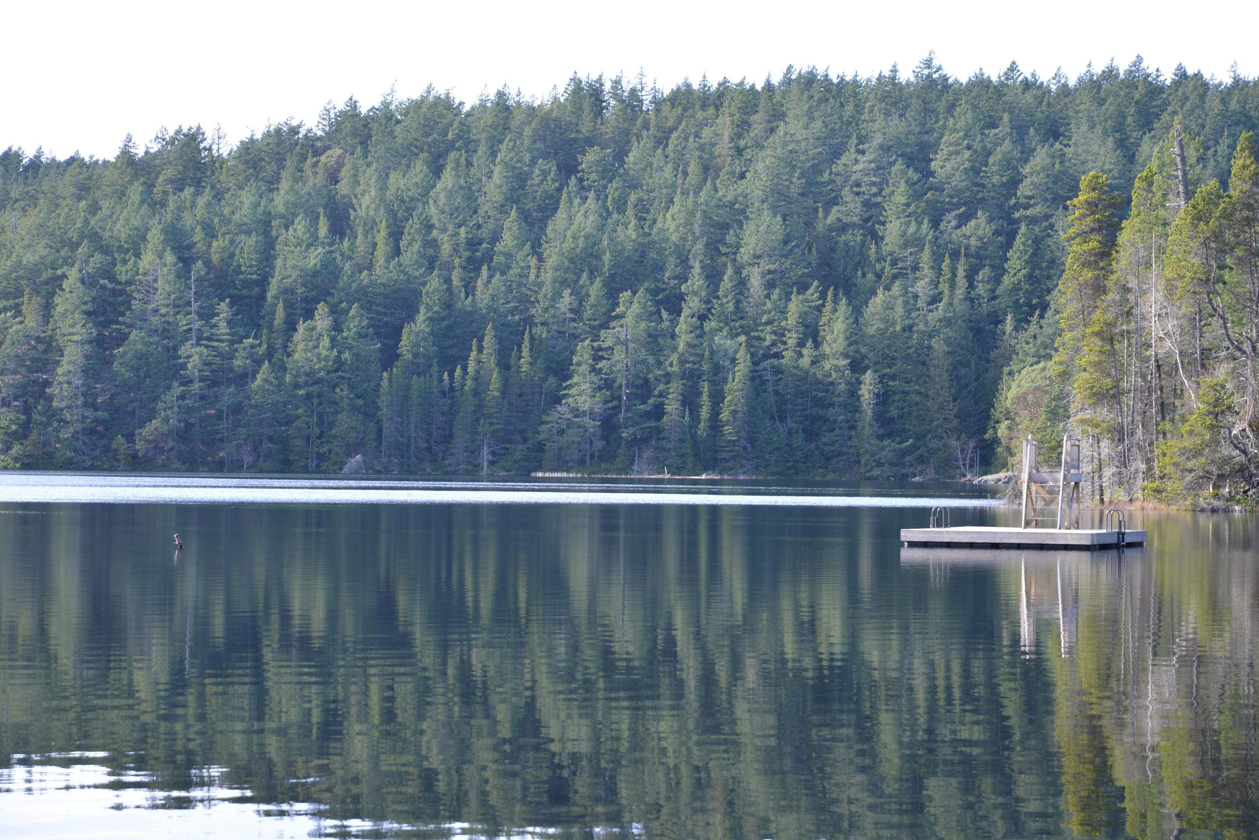 Horseshoe Lake with floating dock.JPG