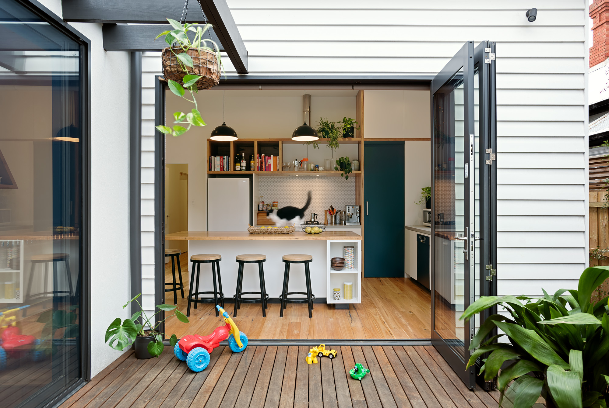 green sheep collective sustainable architect melbourne large bi fold doors passive solar heating cooling.jpg