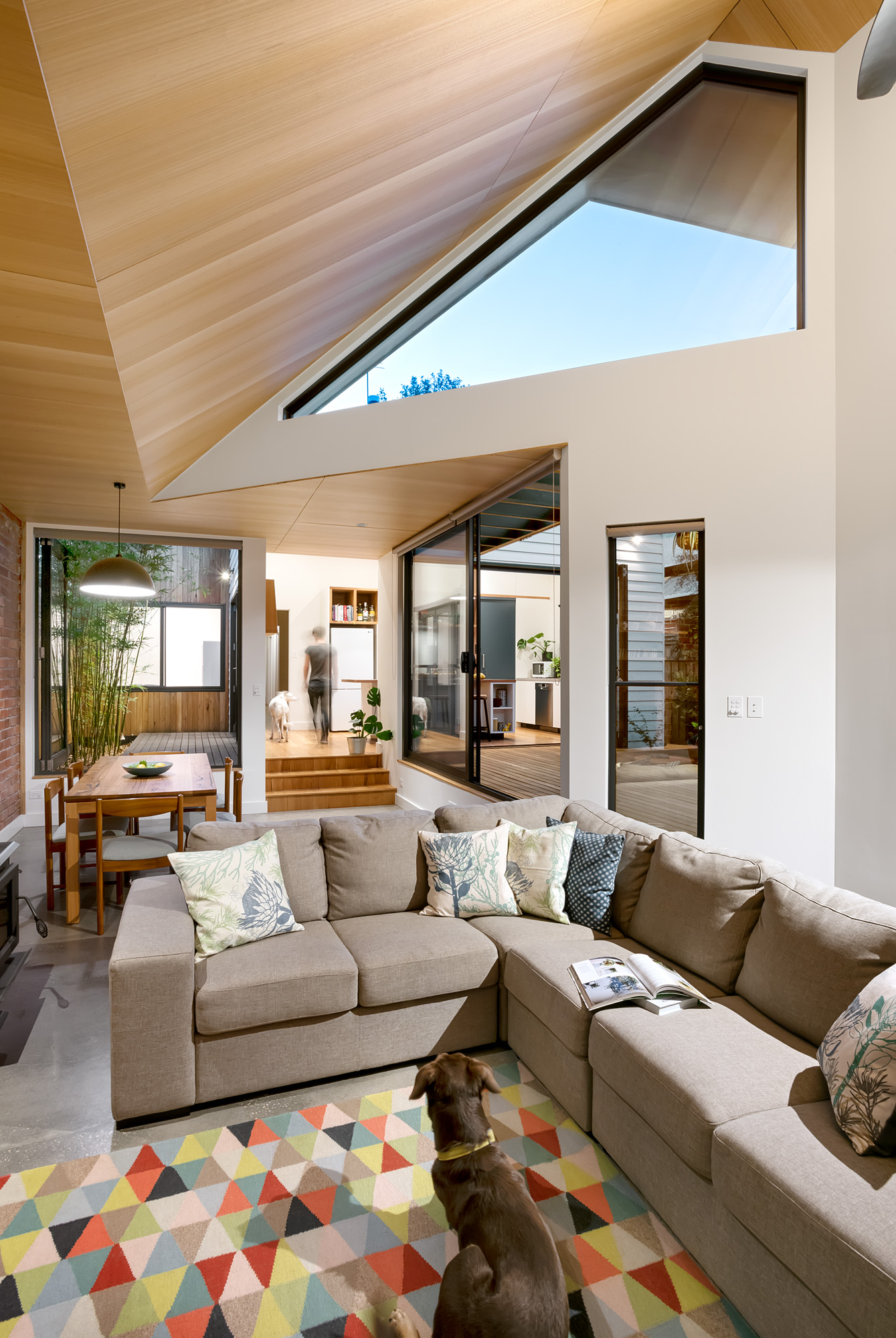 green sheep collective sustainable architect melbourne north facing windows split level thermal mass.jpg