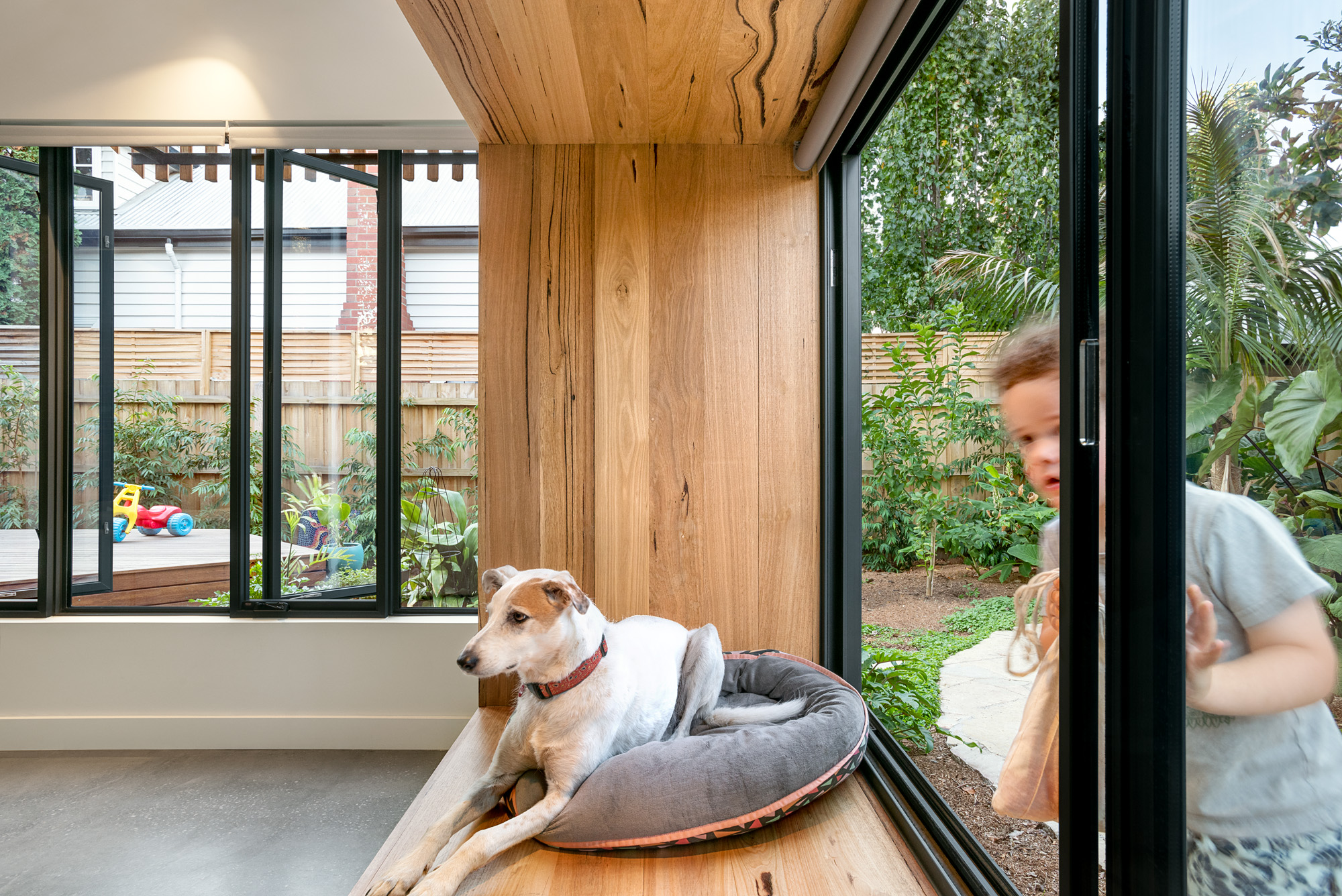 green sheep collective sustainable architect melbourne window seat indoor outdoor living victorian ash rylock.jpg