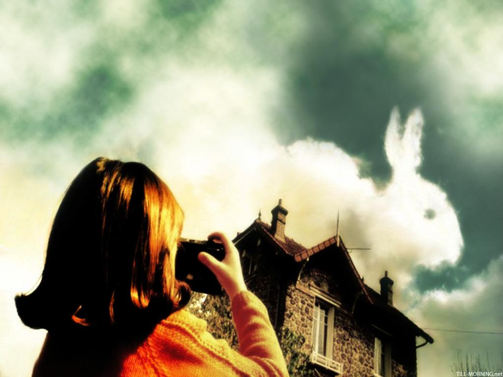 amelie_bunny_pic.jpg