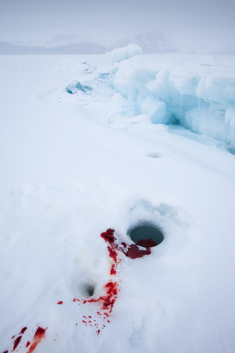 ©Justin Lewis_Greenland.2012-29.jpg