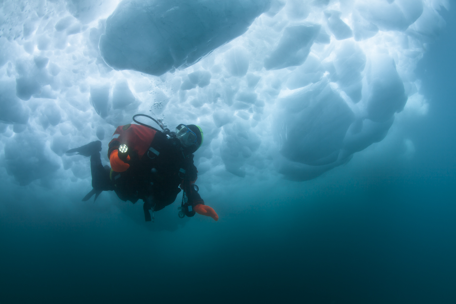 Jorgen, dressed in his dry suit and specialized arctic diving gear, peers through an ice sheet around looming icebergs. In 0.8ºC water in Disko Bay, Greenland, the underwater world holds unseen mysteries and surprises. #70degreeswest #justinlewisphotography unseen mysteries and surprises. #70degreeswest #justinlewisphotography
