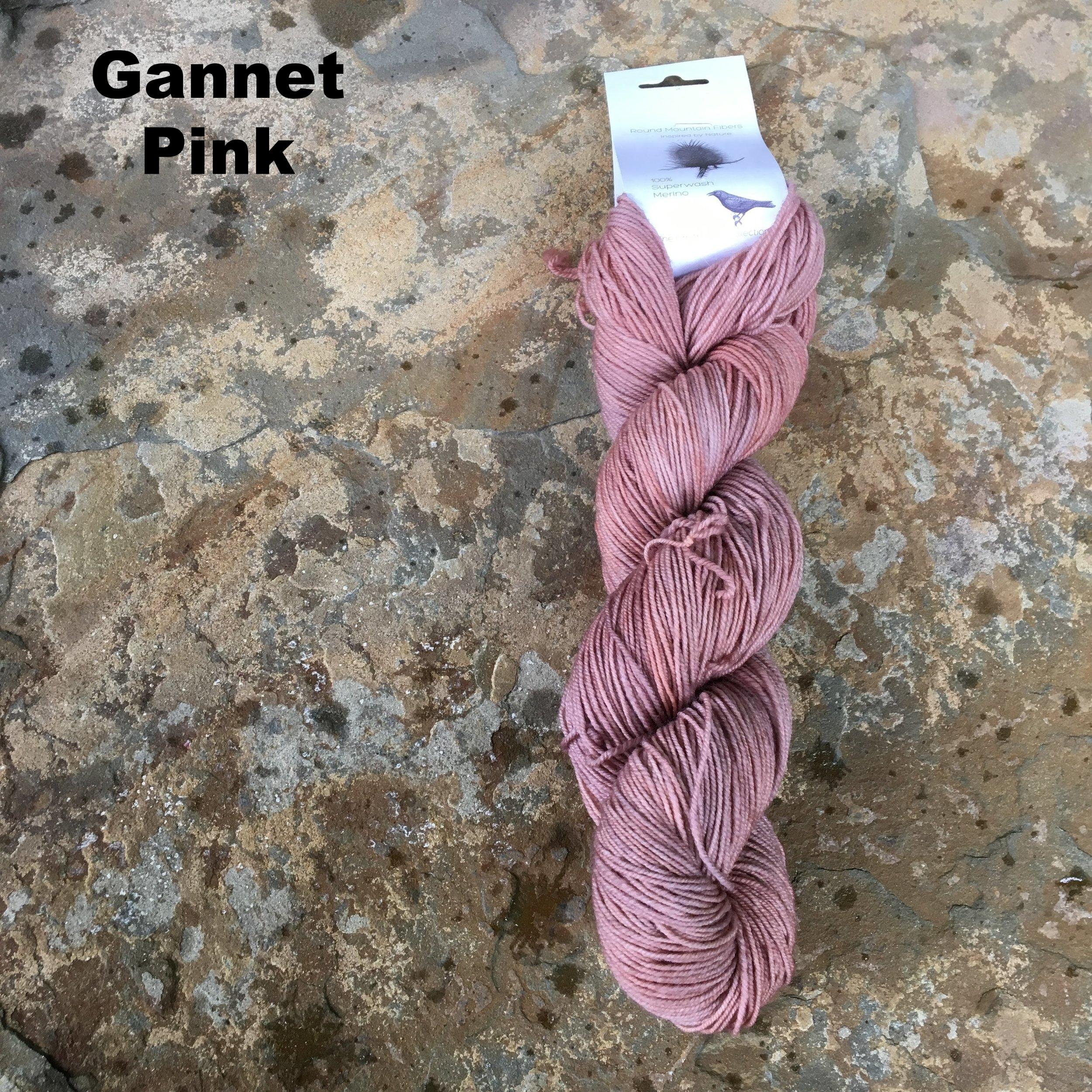 gannet pink fingering.JPG