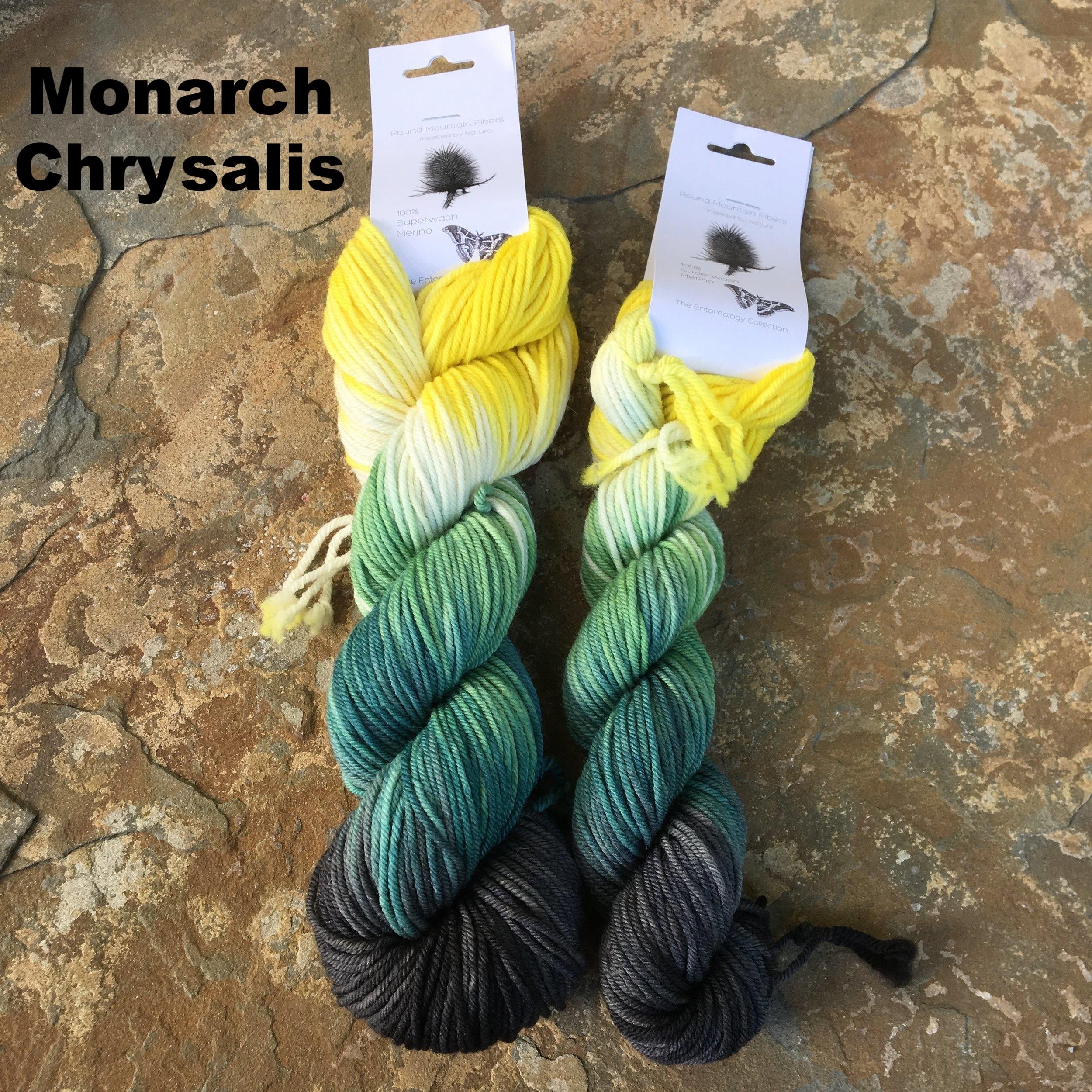 monarch chrysalis fingering.JPG