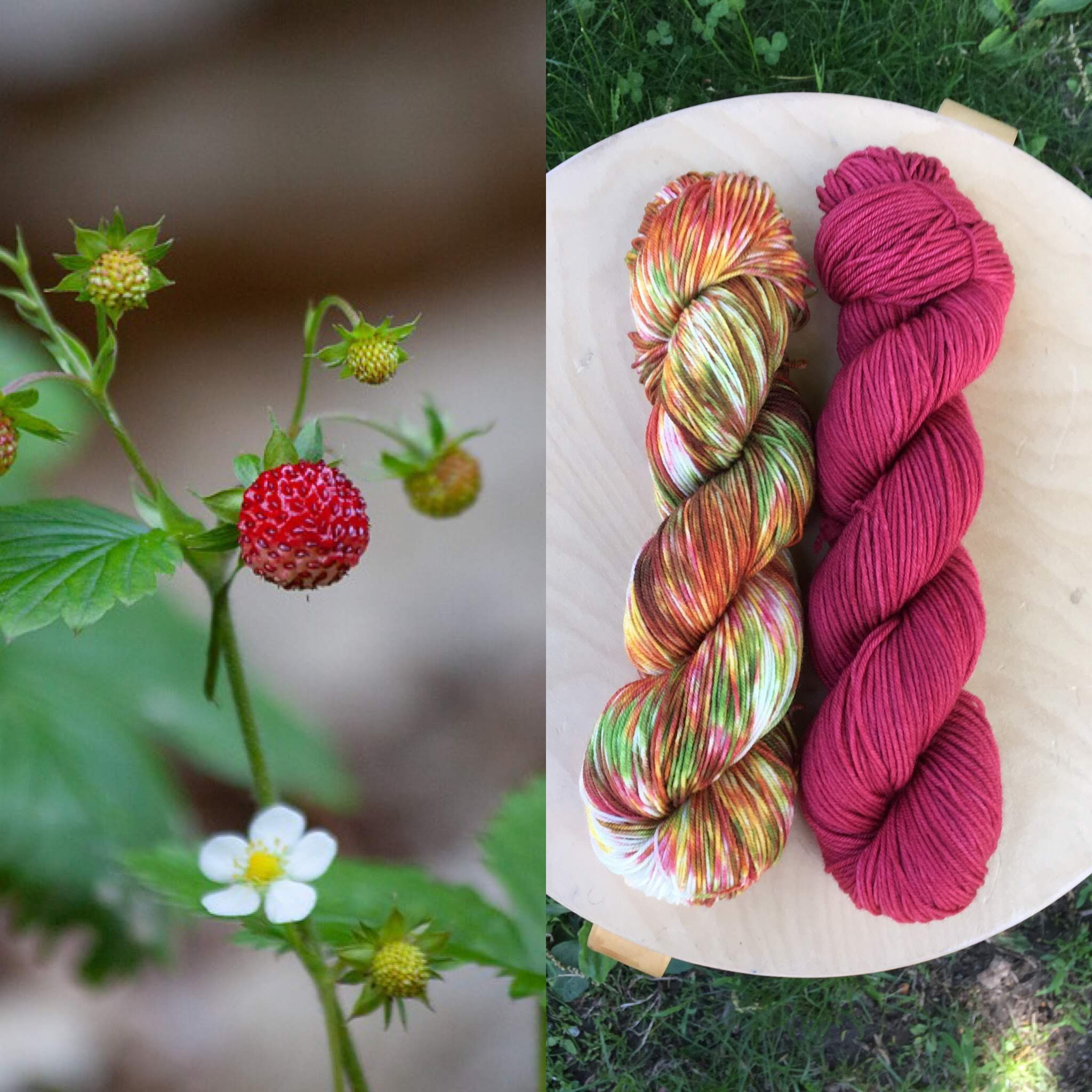 June Botany Club. Colorway: Wild Strawberry. Semisolid: Strawberry Red.