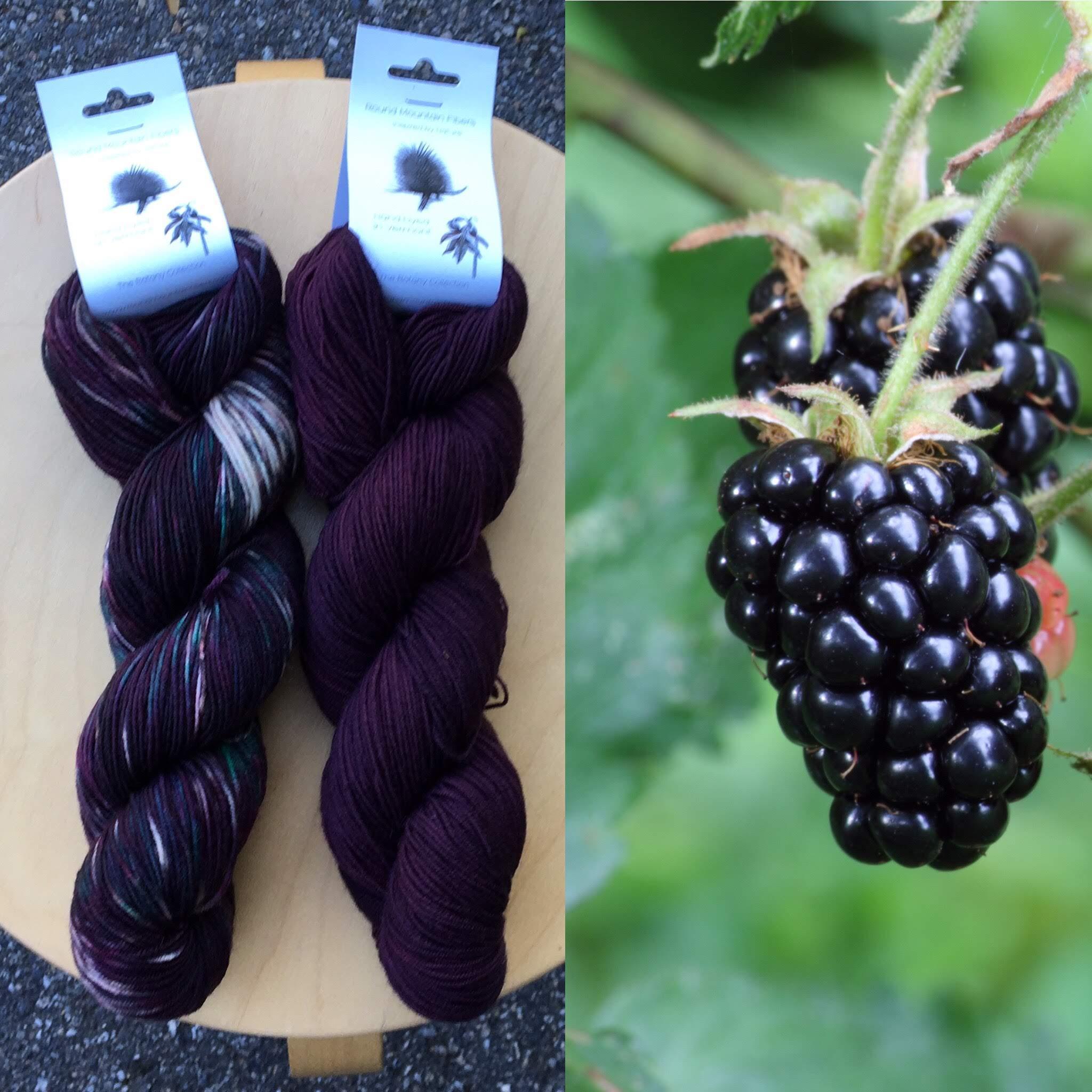 October Botany Club: Blackberries and Blackberry Juice.