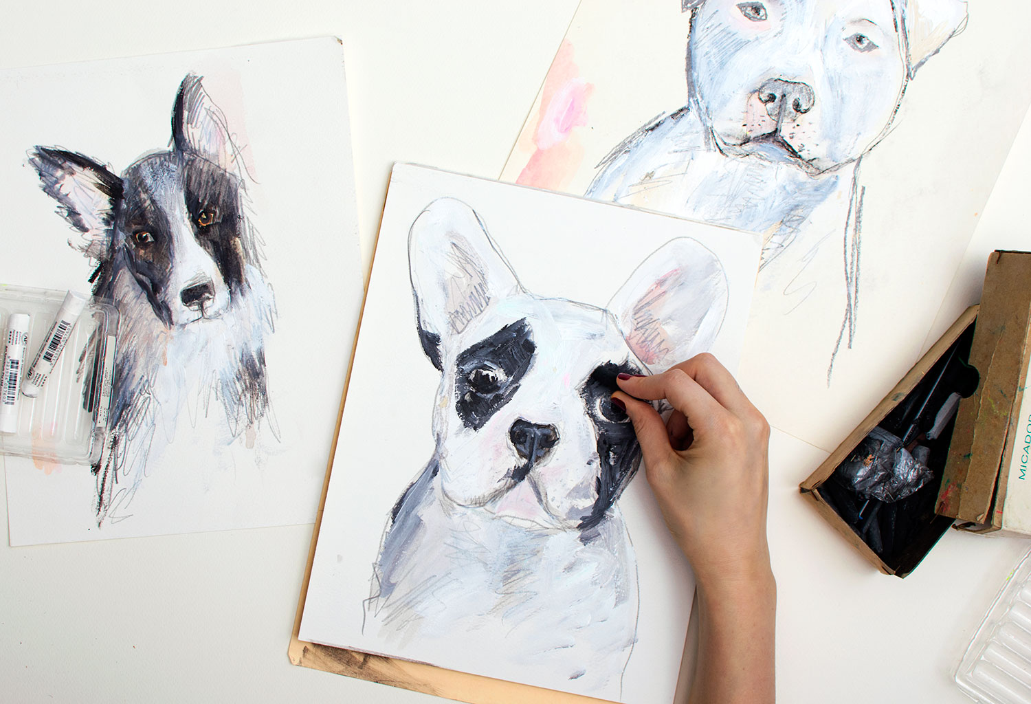 Artist work in progress drawings of dog portraits in charcoal, pencil and pastels.