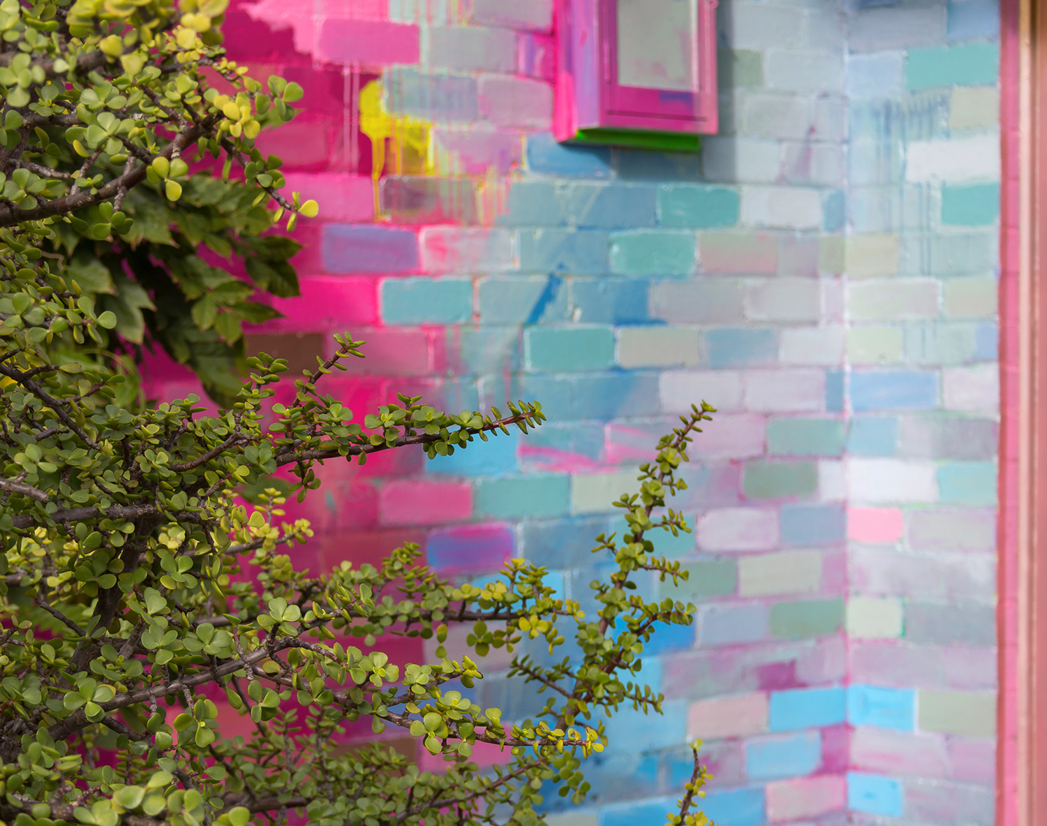 A residential home has been used as a giant art canvas, with a vibrant, abstract design painted on the bricks in a color palette of pink, blue and metallic. Green foliage contrasts against the painted backdrop.