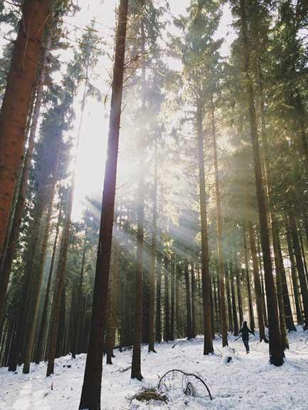asyrafacha-rays-of-light-trilastiko-landscape-2.jpg