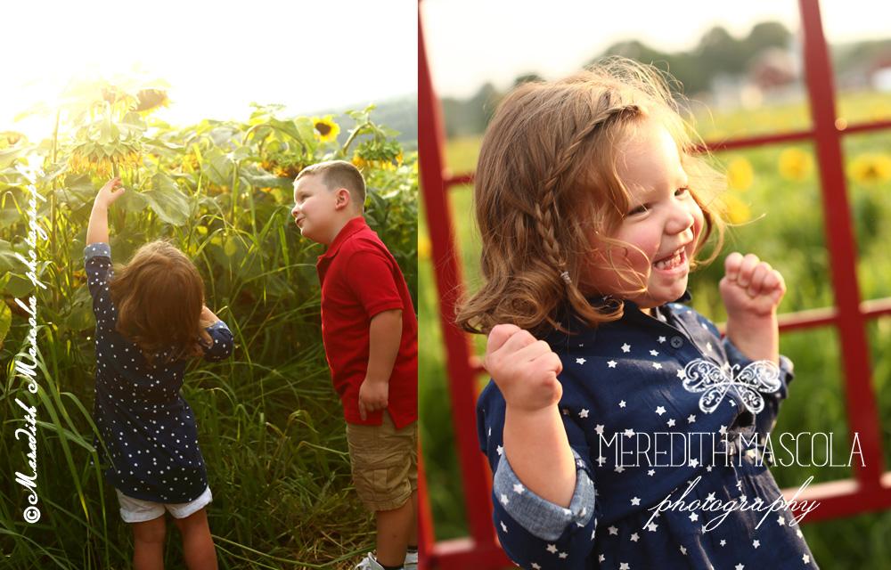 newjerseysunflowerportraits1.jpg