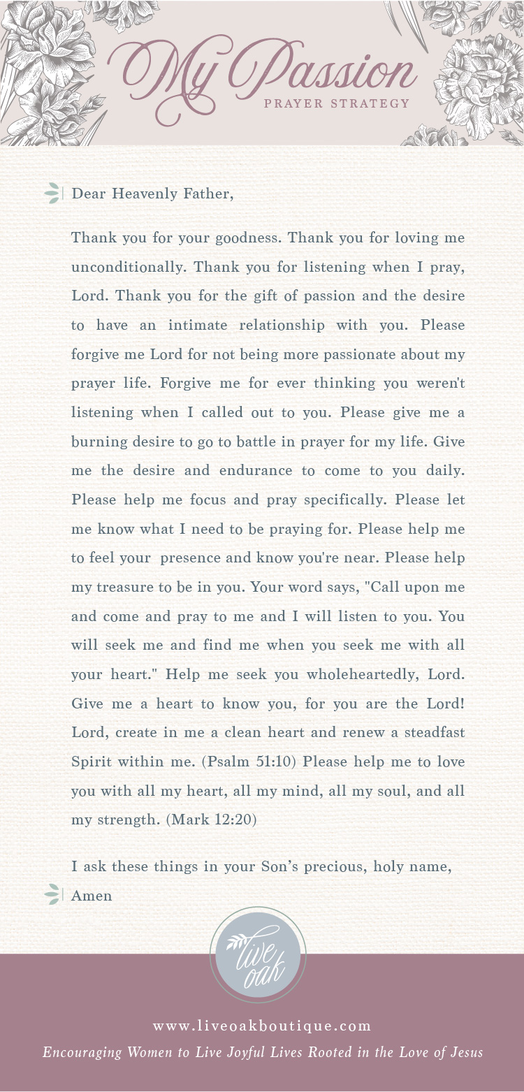 Passion Prayer Strategy from Live Oak Boutique. www.liveoakboutique.com